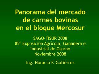 Panorama del mercado de carnes bovinas en el bloque Mercosur  SAGO-FISUR 2008 85  Exposici n Agr cola, Ganadera e Indust