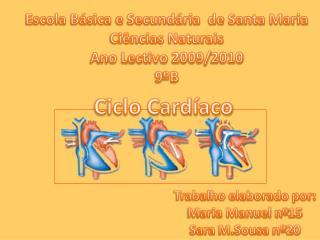 Escola Básica e Secundária  de Santa Maria Ciências Naturais Ano Lectivo 2009/2010 9ºB