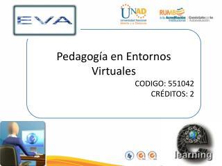 Pedagogía en Entornos Virtuales CODIGO:  551042 CRÉDITOS: 2