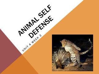 Animal Self Defense