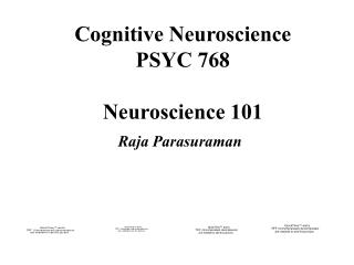 Cognitive Neuroscience PSYC 768 Neuroscience 101
