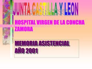 HOSPITAL VIRGEN DE LA CONCHA ZAMORA