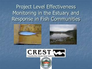 Project Level Effectiveness Monitoring in the Estuary and Response in Fish Communities