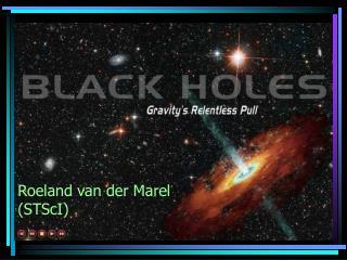 Roeland van der Marel (STScI)