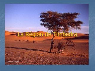 La Région de Timbedra