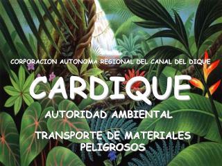 CORPORACION AUTONOMA REGIONAL DEL CANAL DEL DIQUE