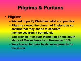 Pilgrims & Puritans