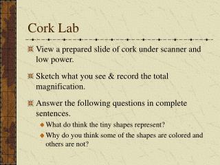 Cork Lab