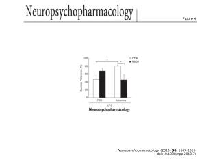 Neuropsychopharmacology  (2013)  38 , 1609-1616; doi:10.1038/npp.2013.71