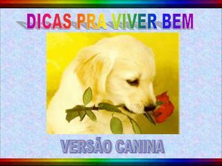DICAS PRA VIVER BEM