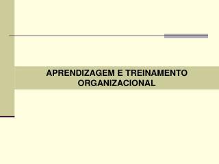 APRENDIZAGEM E TREINAMENTO ORGANIZACIONAL