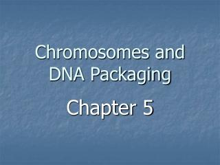 Chromosomes and DNA Packaging