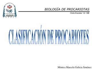 BIOLOG�A DE PROCARIOTAS