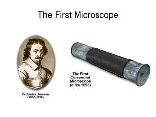 The First Microscope