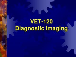 VET-120 Diagnostic Imaging