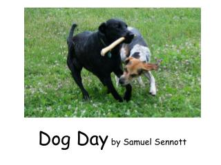 Dog Day  by Samuel Sennott