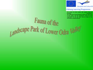 Fauna of the Landscape Park of Lower Odra Valley