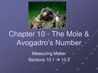 Chapter 10 - The Mole & Avogadro's Number
