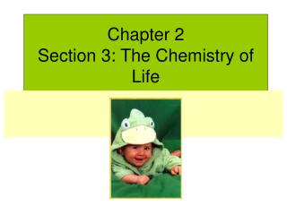 Chapter 2  Section 3: The Chemistry of Life