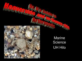 Marine Science UH Hilo
