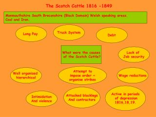 The Scotch Cattle 1816 -1849