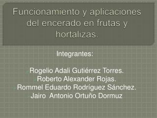 Funcionamiento y aplicaciones del encerado en frutas y hortalizas.