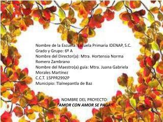 Nombre de la Escuela: Escuela Primaria IDENAP, S.C. Grado y Grupo: 6º A