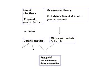 Law of inheritance  Proposed genetic factors
