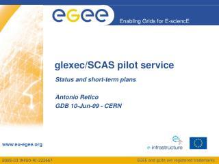 glexec/SCAS pilot service