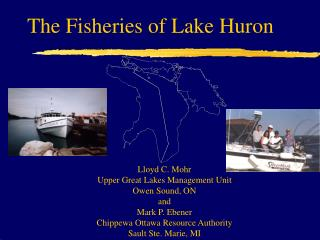 Lloyd C. Mohr Upper Great Lakes Management Unit Owen Sound, ON and Mark P. Ebener