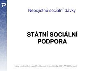 Nepojistné sociální dávky