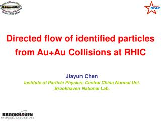 Directed flow of identified particles from Au+Au Collisions at RHIC