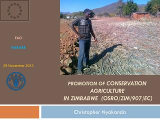 Promotion of  conservation agriculture   in Zimbabwe  ( OSRO /ZIM/907/ ec )