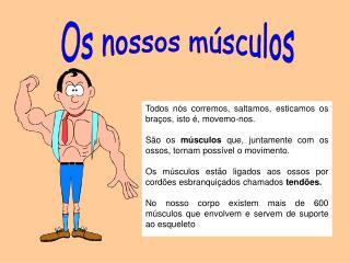 Os nossos músculos