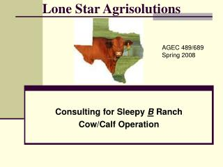 Lone Star Agrisolutions