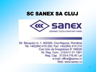 SC SANEX SA CLUJ