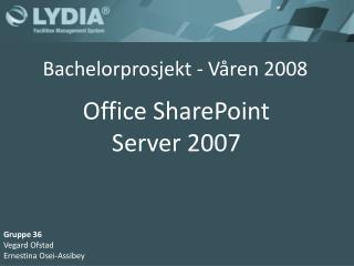 Bachelorprosjekt - Våren 2008