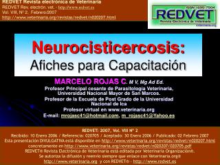 Neurocisticercosis: Afiches para Capacitaci n