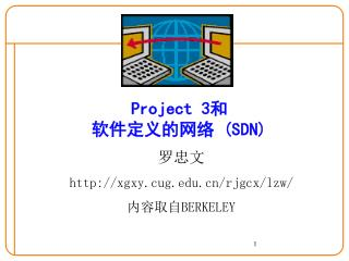 Project 3 和 软件定义的网络  (SDN)