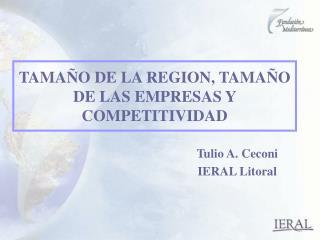 TAMAÑO DE LA REGION, TAMAÑO DE LAS EMPRESAS Y COMPETITIVIDAD