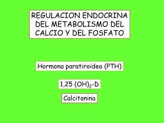 Hormona paratiroidea (PTH)
