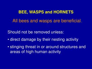 BEE, WASPS and HORNETS