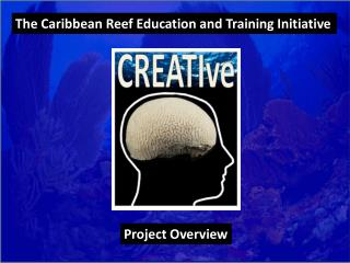 The Caribbean Reef Education and Training Initiative