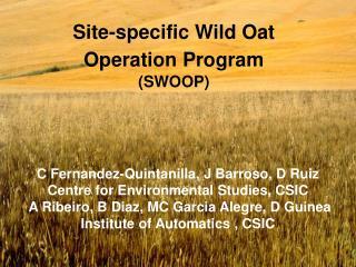 Site-specific Wild Oat Operation Program (SWOOP)