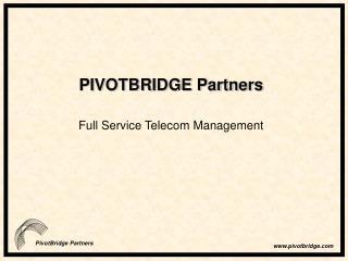 PIVOTBRIDGE Partners