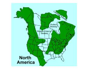 Cratonic Sequences of North America