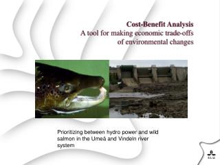 Cost-Benefit Analysis A  tool for making economic trade-offs of environmental changes