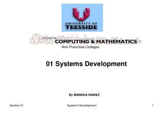01 Systems Development