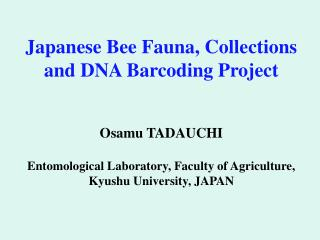 1  Database Files of Japanese and Asian Insects