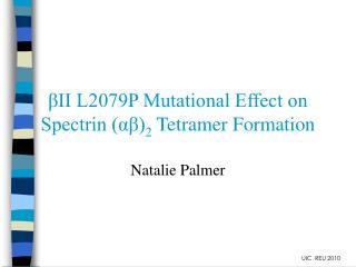 II L2079P Mutational Effect on Spectrin a 2 Tetramer Formation